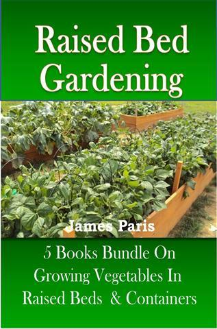 consider a raised bed vegetable garden raised bed gardening another small