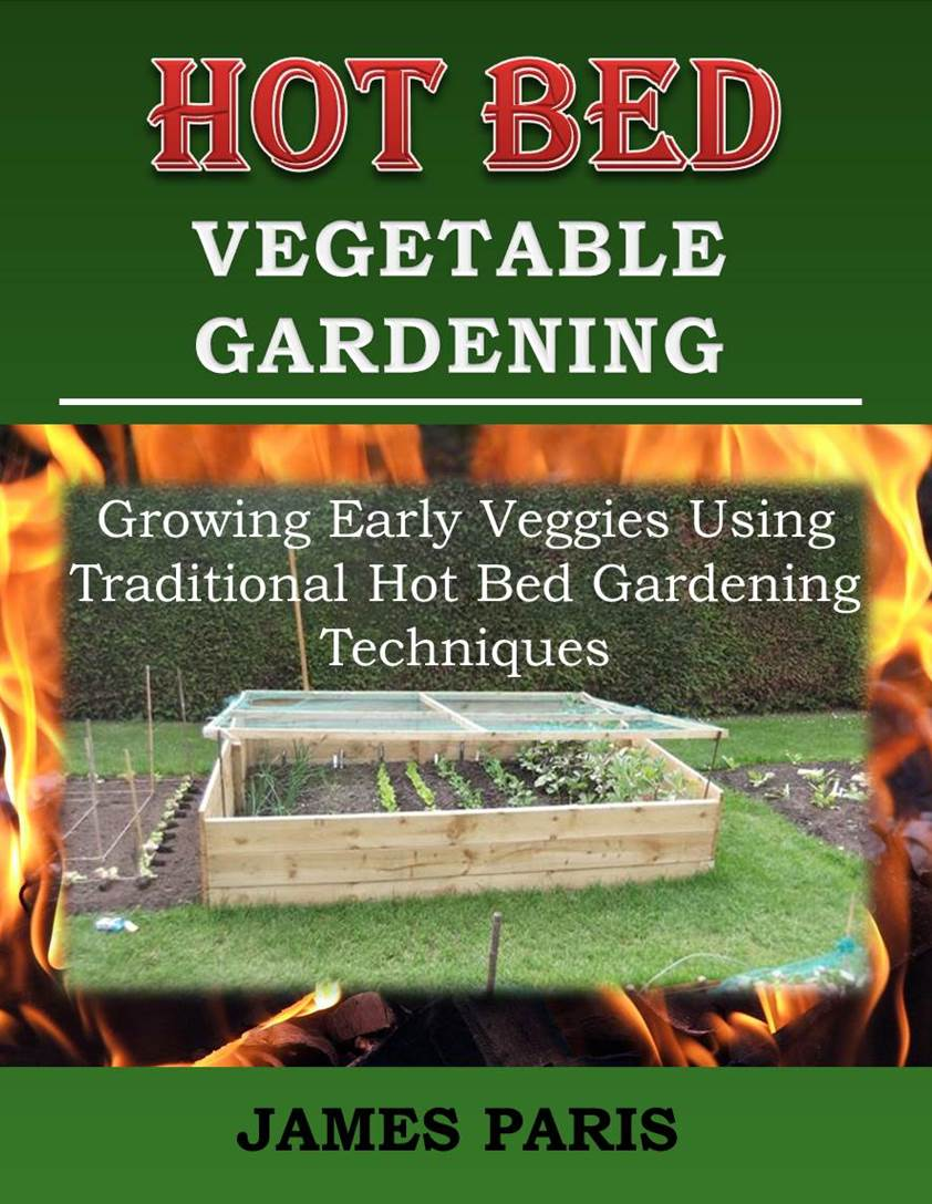 Hot Bed Gardening Ideas Growing Vegetables In Hot Beds