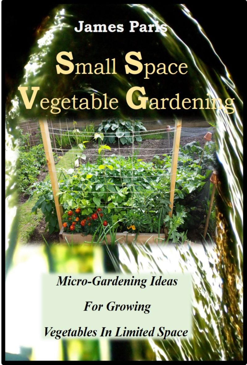 Small Vegetable Garden Layout Examples